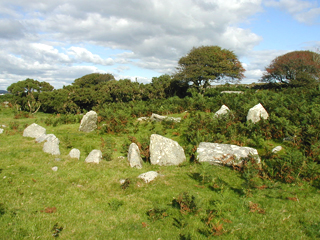 One of our bronze age hut circles.